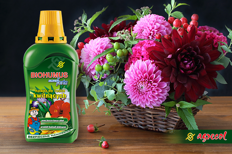 biohumus do kwitnących