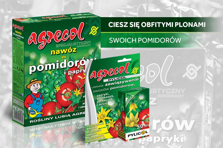 IO_Pomidory-gruntowe