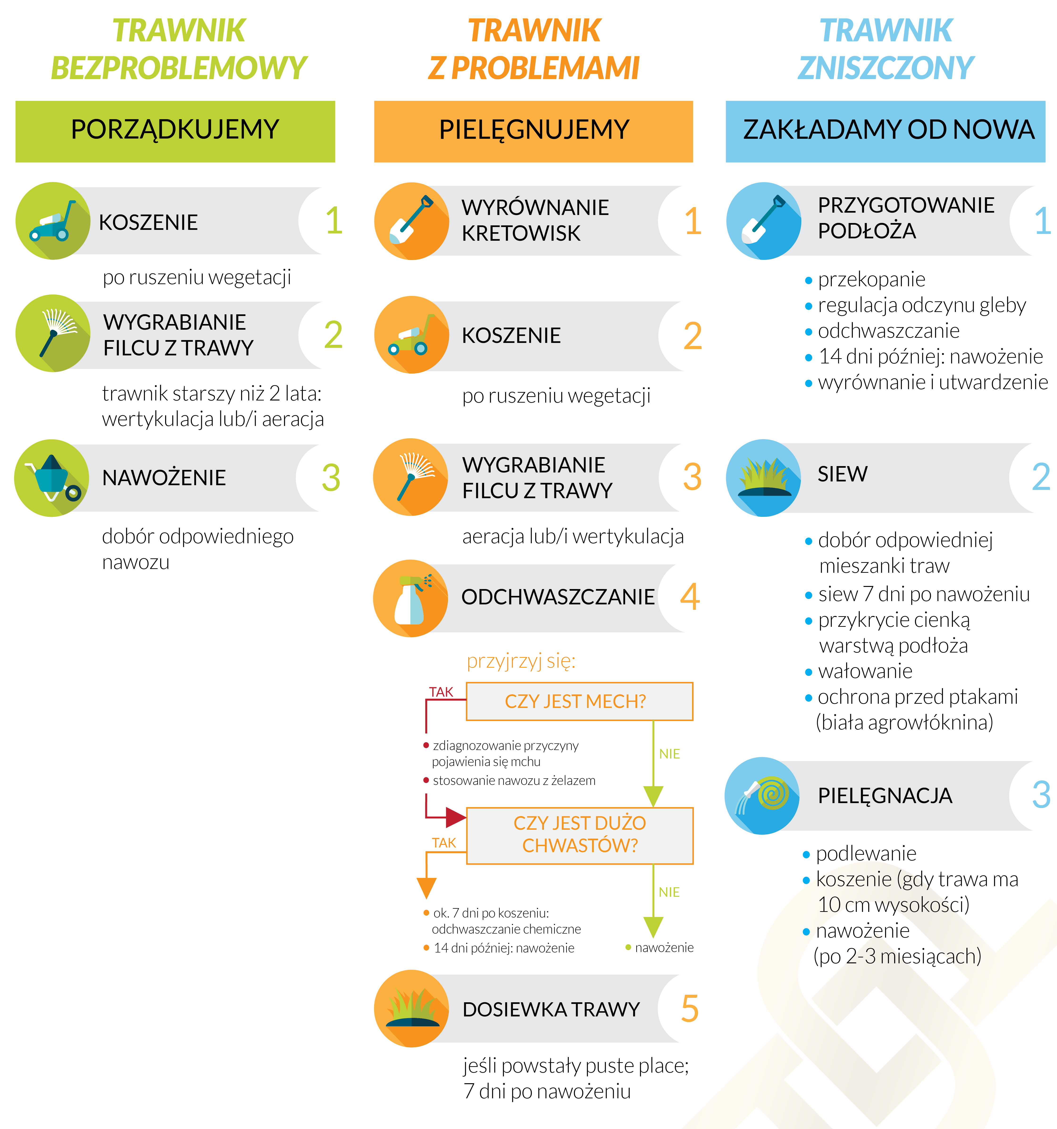 trawniki infografika