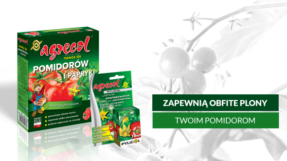 pomidory_nawozy